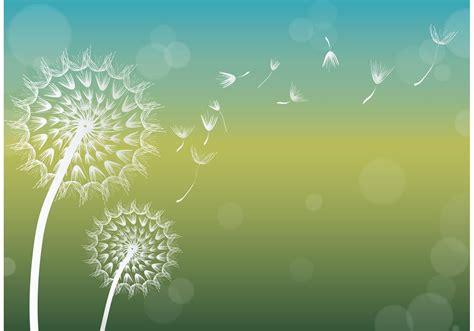 dandelion background dandelion vector background free vector