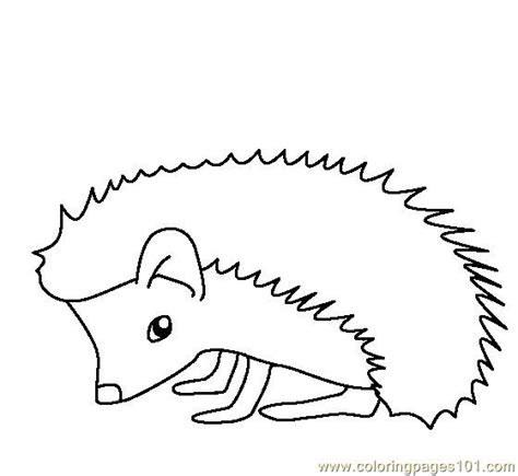 hedgehog coloring pages coloring pages hedgehog animals gt hedgehogs free