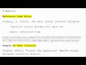 how to use apa format for citation no 3 a website