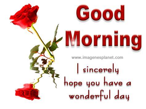 imagenes de good morning amor rosas con frases de buenos d 237 as im 225 genes con movimiento