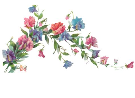 wallpaper flower png http jinifur deviantart com art floral branch element