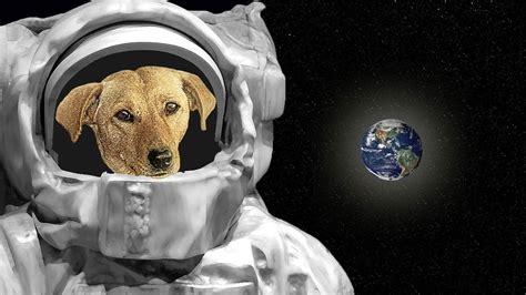 aa laika aa  sad story  laika  dog  space youtube