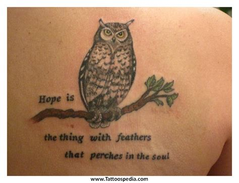 drake owl tattoo quote owl tattoos with quotes tattoo collection