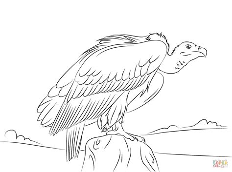 Online Vulture Coloring Page 45 With Additional Coloring Free Coloring Page Site