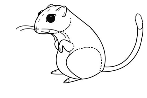 gerbil coloring pages 171 free coloring pages