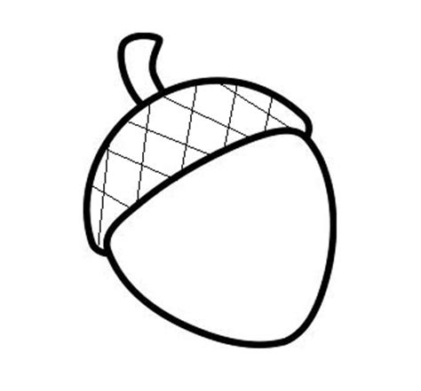 Acorn Drawing Outline by How To Draw A Acorn Clipart Best