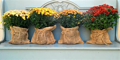 decorar macetas con arpillera arpillera opciones para usarla como decoraci 243 n en casa
