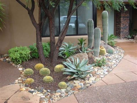 Desert Garden Ideas 596 Best Desert Landscaping Images On Pinterest