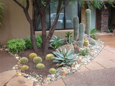 596 best desert landscaping images on pinterest