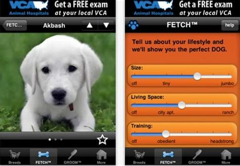puppy apps celebrate national day 2011 with these apps product reviews net