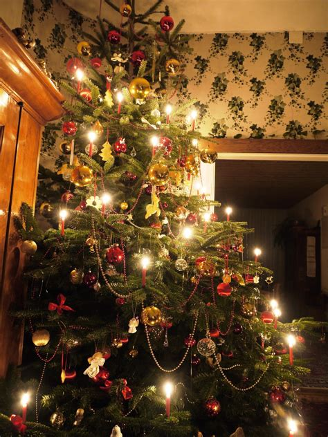 white christmas and decorated christmas tree in