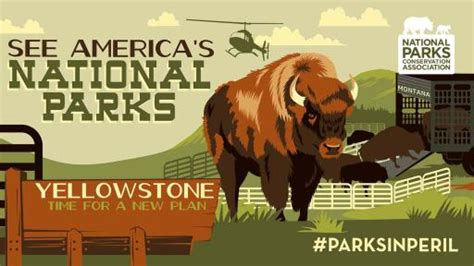 yellowstone 183 national parks conservation association national parks at a crossroads 9 parksinperil