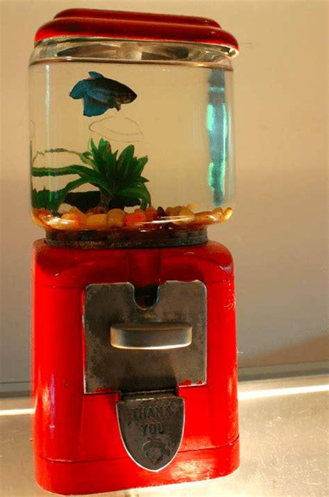 gg theme creator jar gumball fish tank