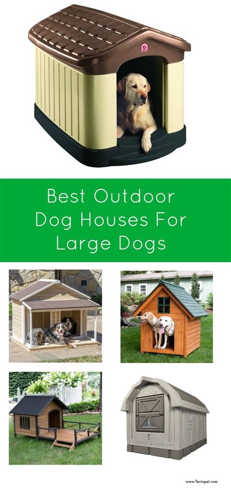 Best Outdoor Dog Houses for Large Dogs Tectopet