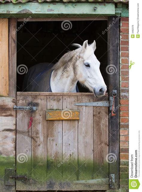 stall pferd pferd im stall lizenzfreie stockfotos bild 3482378