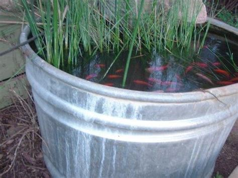 how to make a simple and cheap fish pond good garden design pinterest gardens say you