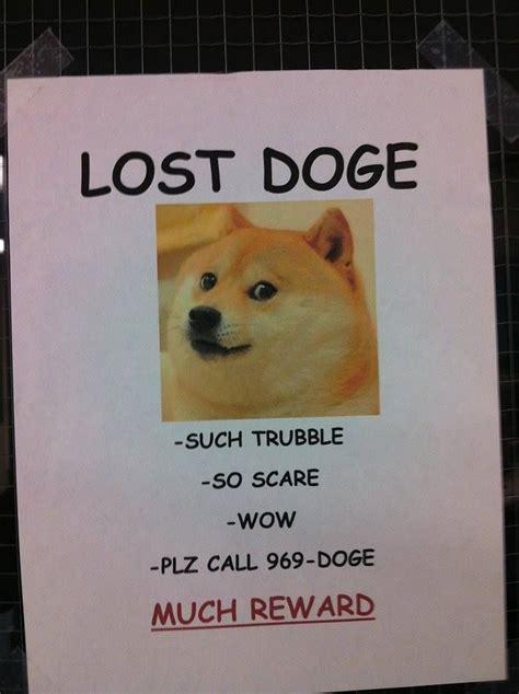 Lost Doge Meme - 42 best images about doge meme on pinterest valentine