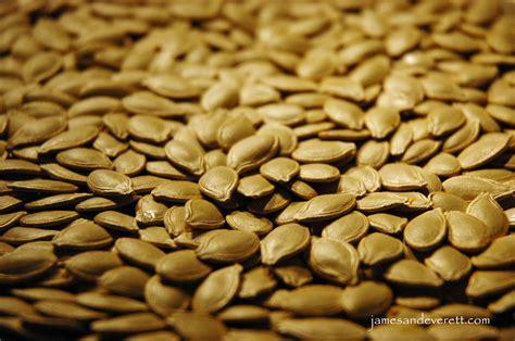 Pumpkin Seed roasted pumpkin seeds everett