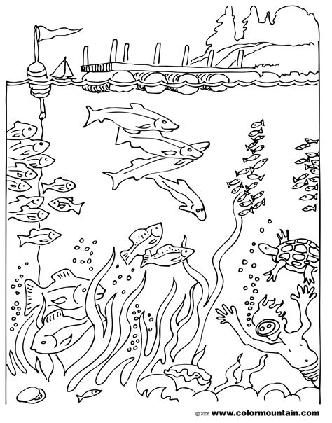 free coloring pages of deep sea diving