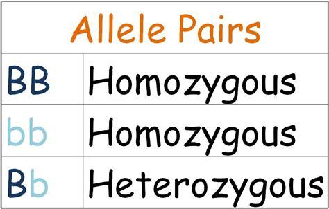 exle of heterozygous ms iracheta s biology class mendelian genetics 6 3 6 5