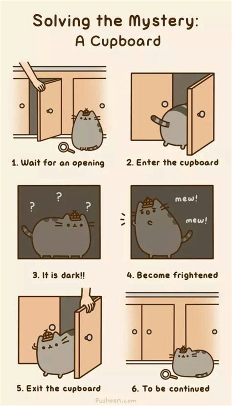 Pusheen Cat Meme - 10 images about pusheen the cat on pinterest beach