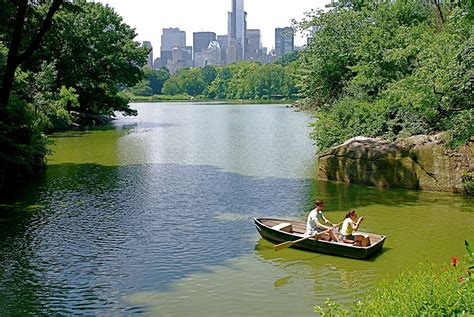 swan boats in central park nyc nyc boating on the lake in central park