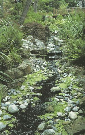 stream bed dry streambed the look feel of a water feature