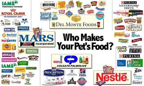 food brands to avoid pet food brands