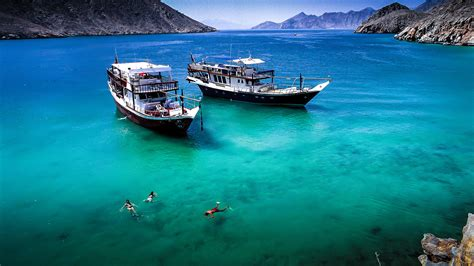 dive oman almarsa musandam oman s ultimate diving and dhow cruise
