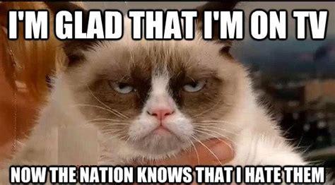 grumpy cat work quotes quotesgram