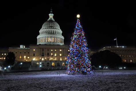 panoramio photo of the 2010 u s capitol christmas tree