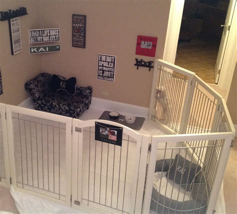 room of puppies 50 best puppy room ideas meowlogy