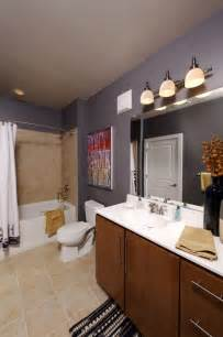 apartment bathroom decorating ideas bathroom bathroom decorating ideas on budget best