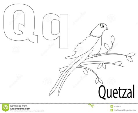 coloring page quetzal quetzalcoatl colouring pages