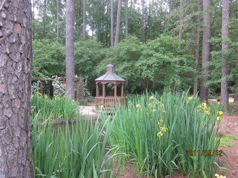 Fayetteville Botanical Garden Cape Fear Botanical Garden Fayetteville Nc Hours Address Attraction Reviews Tripadvisor