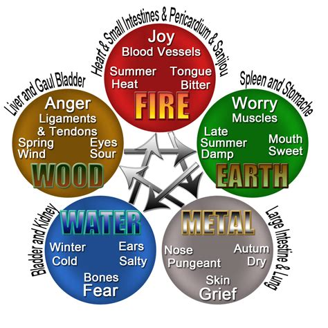 the 5 elements of balance and harmony aligning with the 5 elements of this world