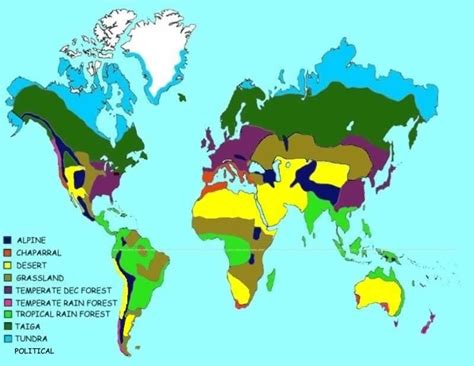 biome map freshwater biome world map quotes