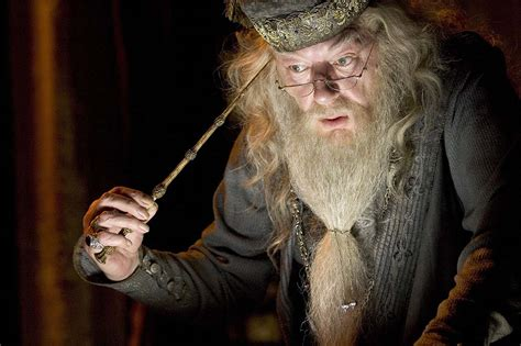 what house is dumbledore in if quot harry potter quot characters were holidays