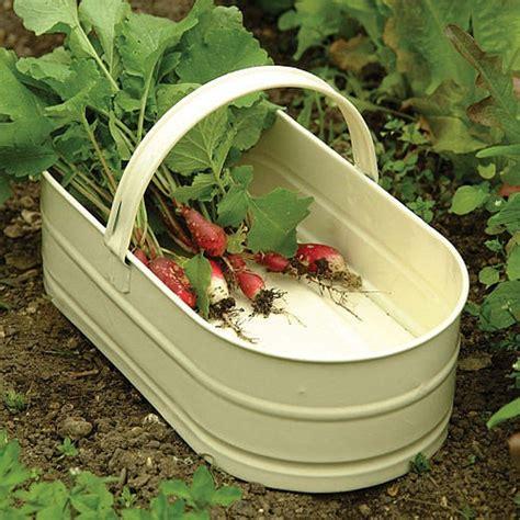 Garden Trug Planter by 17 Best Images About Garden Trug On Gardens
