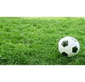 Soccer Ball On The Grass Stock Video 12394316  HD