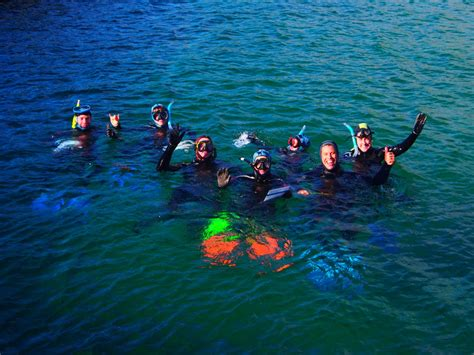 marine biologist information about becoming a marine html