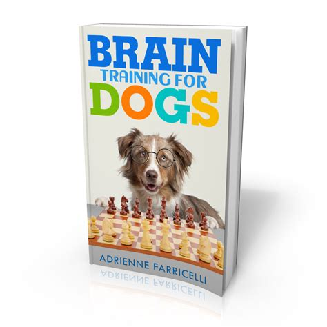 brain for dogs brain for dogs by adrienne farricelli brain for dogs
