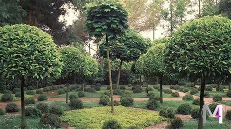 giardino della landriana il giardino della landriana
