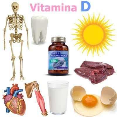 alimentos vitaminas d 191 para qu 233 nos sirve la vitamina d en nuestro cuerpo