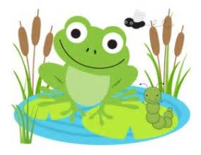Lily Wall Stickers all about frogs for kids and teachers kiddyhouse com