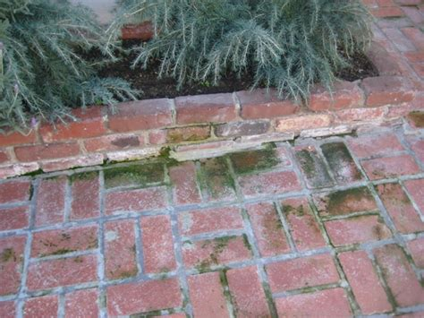 How To Clean Moss Patio by Cleaning How Do I Remove Moss From An Outdoor Brick