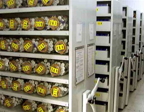 seed bank the importance of maintaining seed banks