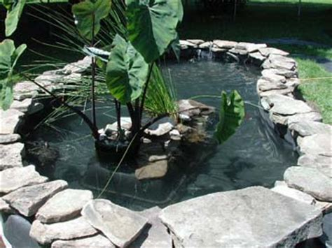 backyard turtles water garden supplies fish pond supplies the pond guy create your own oasis in a