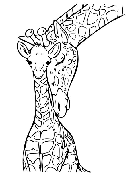 christmas giraffe coloring pages baby giraffe drawing clipart best