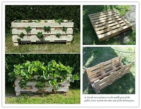 strawberry bed ideas strawberry bed gardening ideas pinterest